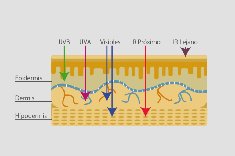 How The Sun Affects The Different Skin Layers Vitae International