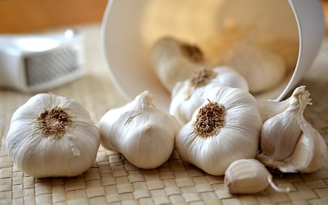 Cholesterol and aged garlic