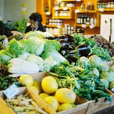 Lista de nutrientes buenos para el sistema digestivo