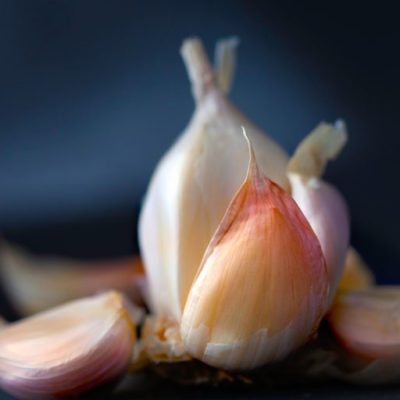 Revolutionary garlic
