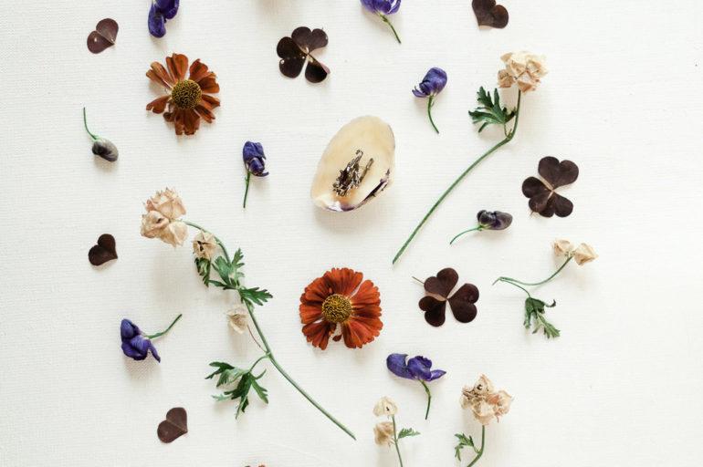5 hierbas para equilibrar tus hormonas